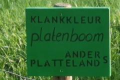 Platenboom-A